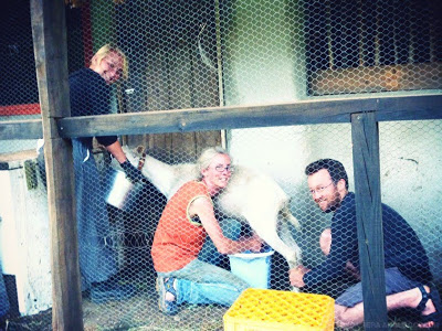 travel the world with WWOOF