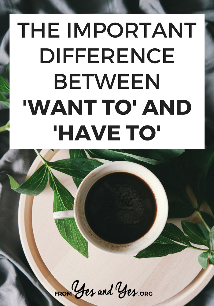 difference between do and have