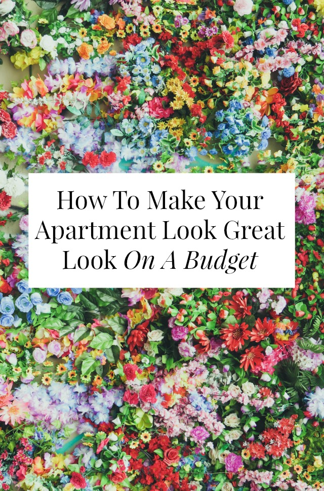 How To Make Your Apartment Look Great On A Budget Yes