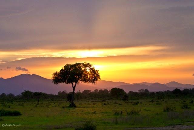 Must go in Tanzania
