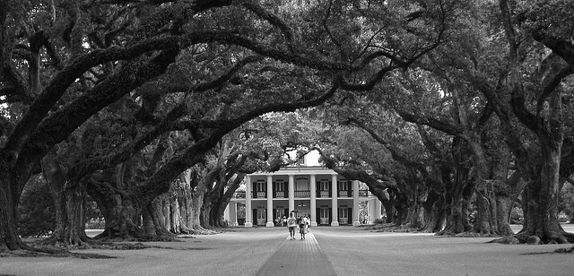 Cultural tips for traveling in the south