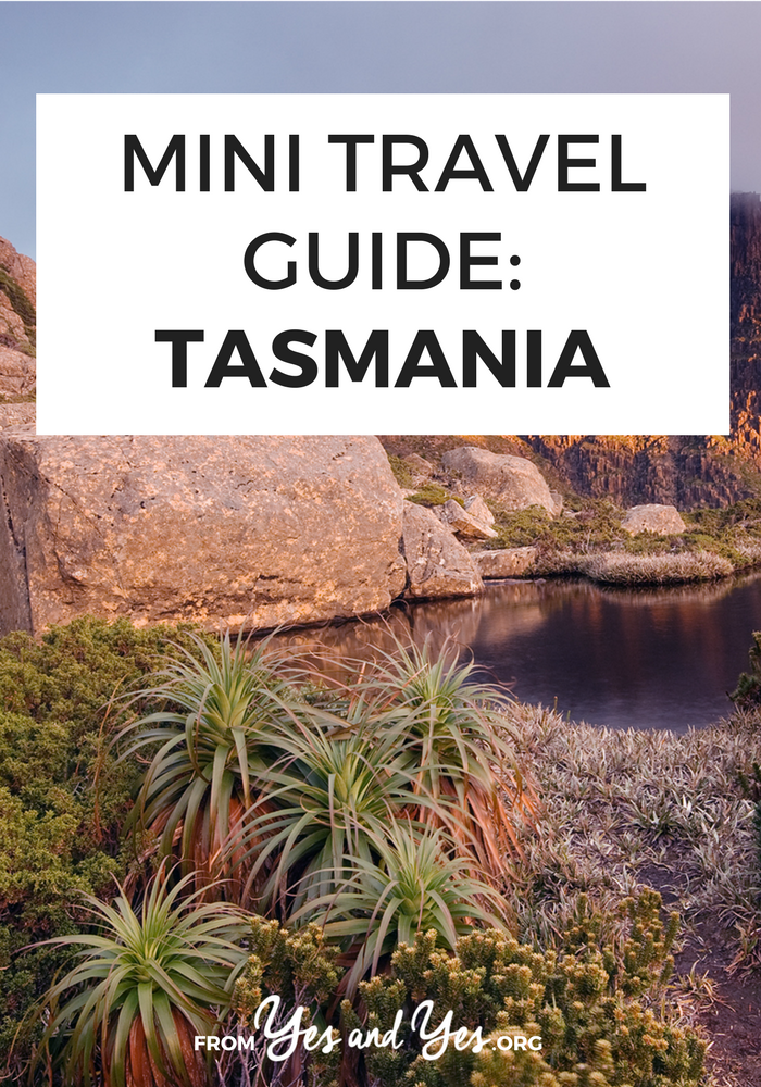 There are so many things to do in Tasmania! Click through for tons of travel tips from a local - what to do, where to eat, and how to travel cheap in Tasmania! >> yesandyes.org