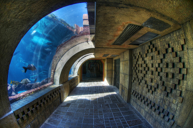 must see Atlantis in The Bahamas, things to see in The Bahamas