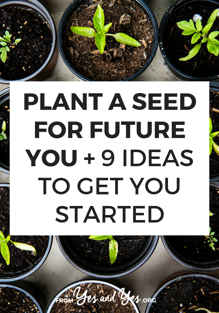 Planting seeds for future you is one of the best self-development, self-care tips out there. Click through for tips on maintaining motivation and productivity!